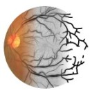 Retina project logo